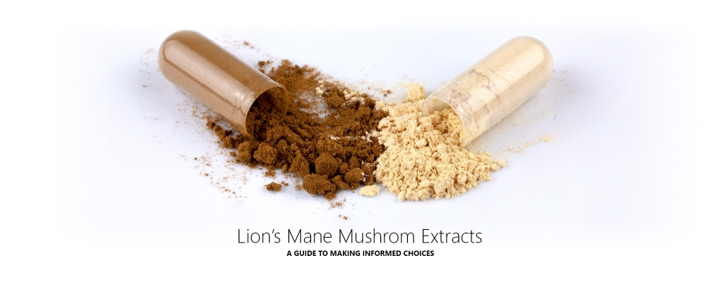 Our Guide to the Best Lion's Mane Mushroom Extract Supplements in the UK