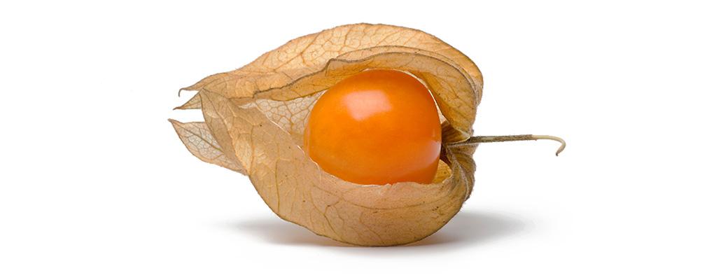 Ashwagandha Fruit
